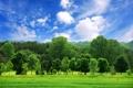 Картинка пейзаж, небо, облака, лес, красиво, обои, деревья