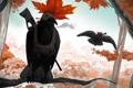 Картинка осень, лес, птица, листок, ветка, ружье, ворон
