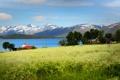 Картинка трава, деревья, Норвегия, поле, горы, домики, озеро