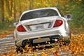 Картинка осень, белый, листья, деревья, Mercedes-Benz, скорость, суперкар