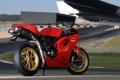 Картинка красный, трасса, мотоцикл, red, Ducati, трибуны, Superbike