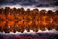 Картинка лес, осень, деревья, небо, река, тучи