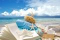 Картинка звезды, wood, starfishes, sand, песок, ракушки, пляж
