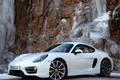 Картинка белый, Porsche, Cayman, автомобиль, порше