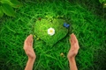 Картинка трава, сердце, руки