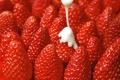 Картинка ягоды, сливки, клубника