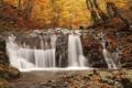 Картинка осень, лес, листья, деревья, ручей, камни, водопад