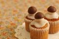 Картинка грибы, три, украшение, десерт, выпечка, сладкое, салфетка