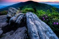 Картинка Highlands, North Carolina, Tennessee, Roan Mountain