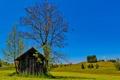 Картинка небо, трава, деревья, дом, холмы