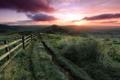 Картинка дорога, поле, пейзаж, закат, природа, забор