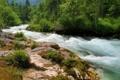 Картинка лес, река, камни, растительность, мох