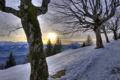 Картинка снег, деревья, горы, природа