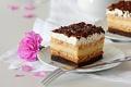Картинка цветы, шоколад, тарелка, торт, розовые, пирожное, вилка