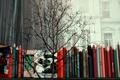 Картинка дерево, карандаши, окно