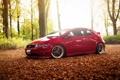 Картинка лес, red, Honda, красная, хонда, Civic, цивик