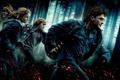 Картинка Гарри Поттер и дары смерти часть 1, Рон, Гермиона, Пепел, Лес