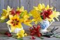Картинка цветы, лилии, книги, желтые, красные, ножницы