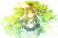 Картинка лес, цветы, Девушка, коса