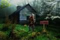 Картинка лес, дом, чернобыль, stalker, лесник