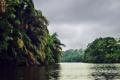 Картинка лес, река, тучи