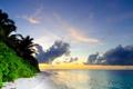 Картинка море, облака, пейзаж, природа, тропики, пальмы, кустарники
