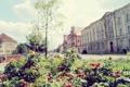 Картинка здания, деревья, лето, куст, улица, ягоды