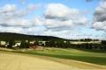 Картинка поле, трава, деревья, пейзаж, природа, кони, дома