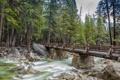 Картинка лес, деревья, мост, природа, река, камни, поток