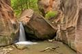 Картинка деревья, камни, скалы, водопад, каньон, ущелье, Zion National Park