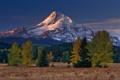 Картинка деревья, пейзаж, природа, обои, Гора, wallpapers