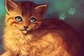 Картинка кошка, морда, позитив, арт, рыжая, lucity