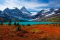 Картинка лес, снег, горы, озеро, растительность