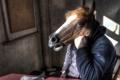 Картинка конь, человек, ситуация