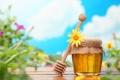 Картинка цветок, небо, желтый, стол, фон, мед, ложка