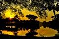 Картинка закат, сад, водоем