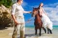 Картинка море, пляж, девушка, лошадь, girl, парень, невеста