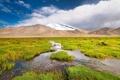 Картинка трава, пейзаж, горы, ручей