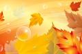 Картинка осень, листья, пузырьки, коллаж