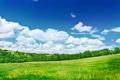 Картинка поле, небо, деревья, природа, пейзажи, облока