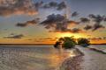 Картинка море, небо, облака, деревья, пейзаж, закат, природа