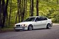 Картинка E46, бмв, BMW, белая, 325i