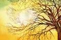 Картинка свет, дерево, картина, акварель