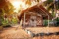 Картинка песок, дом, пальмы, хижина