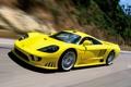 Картинка Saleen, supercar, yellow, speed