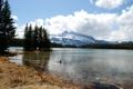 Картинка лес, горы, Канада, Banff National Park, озеро