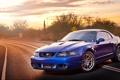 Картинка Mustang, Ford, Cobra, Terminator, SVT