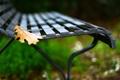 Картинка листья, макро, скамейка, желтый, фон, обои, размытие