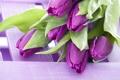 Картинка фиолетовый, цветы, букет, тюльпаны
