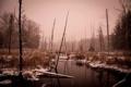 Картинка осень, лес, снег, река